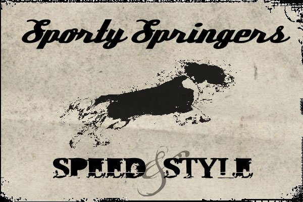 Sporty Springers
